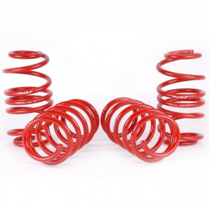 Skunk2 Lowering Springs - Honda Civic 2012-2015 Si